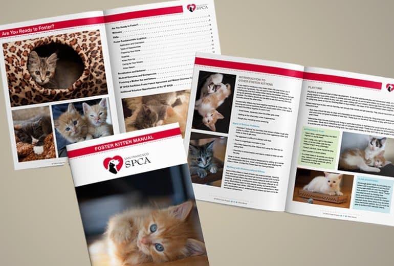 SF SPCA Foster Kitten Manual