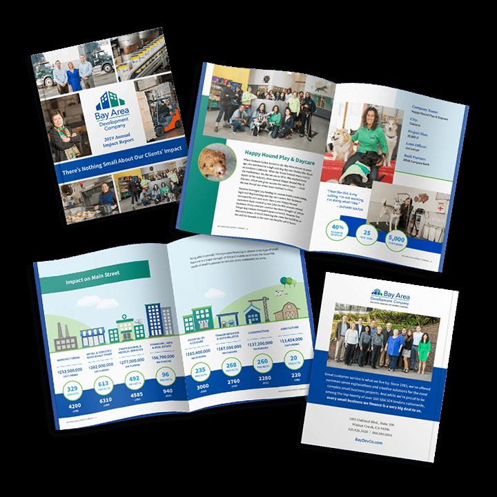 Bay Area Development Company Annual Report Design
